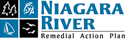 Niagara River Remedial Action Plan