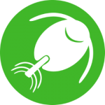 Summary: Phytoplankton and Zooplankton Populations BUI