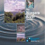 Niagara River AOC Update - 2002