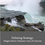 Delisting Strategy: Niagara River (ON) Area of Concern